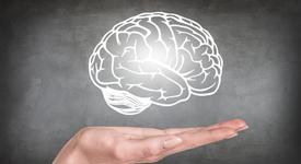 Мозъкът ти показва дали ще страдаш от психични заболявания след години