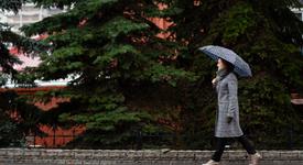 3 зодии, които обичат дъжда