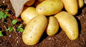 Яжте бели картофи за отслабване!