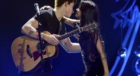 Шон и Камила на концерт на Blink-182