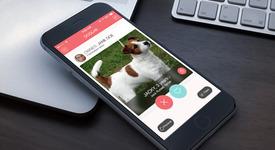 Създадоха българска апликация за срещи на домашни кучета