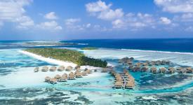 Търси се: Стажант, който да се грижи за костенурки на Малдивите