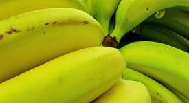 Защо да включим бананите в менюто си ?