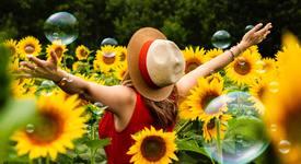 Поза Слънчоглед за летни снимки