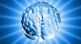 Библиотека от мозъци ще се бори с животозастрашаващи болести