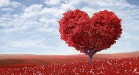 Седмичният ви любовен хороскоп 23 - 29 юли