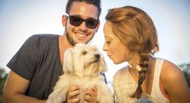 Кучетата подобряват любовния ни живот. Как?