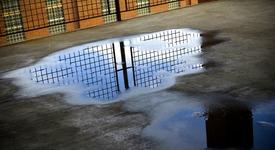 Мъж за малко да се удави в ... локва (+ видео)