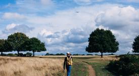 Колко минути на ден да ходите пеша за отслабване?