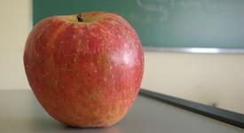 Образованието, което ни научи как да лъжем