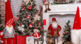 Коледен символ според зодията