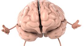 Факт: Човешкият мозък може да съхрани вечната си младост