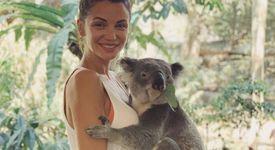 Диляна Попова гушка коала в Австралия