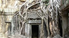 Мистериозният храм Ангкор