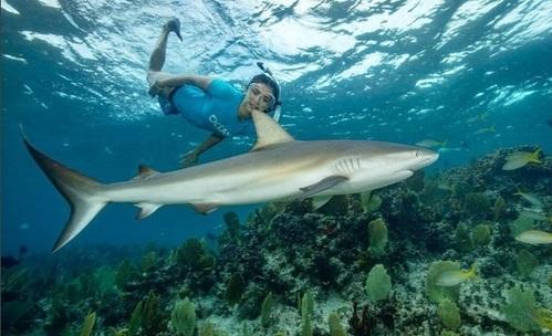 Нина Добрев плува с акули