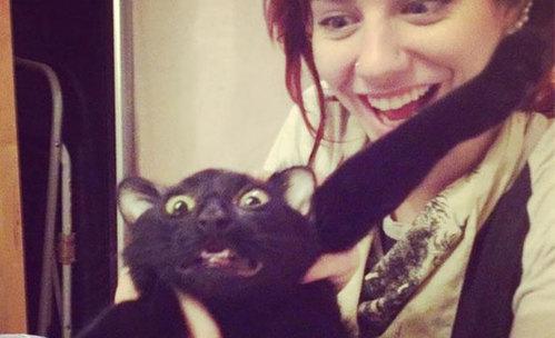 10 котки, които не си падат по селфита