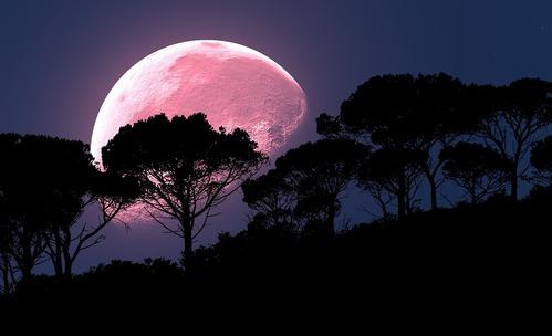 3 зодии, на които Розовата Суперлуна ще донесе щастие
