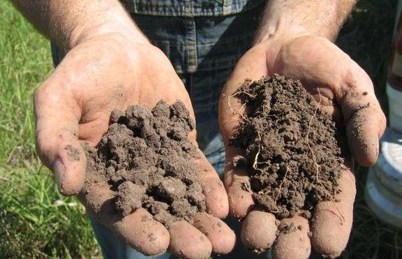 Почви, почвообразуващи фактори, видове почви, свойства.