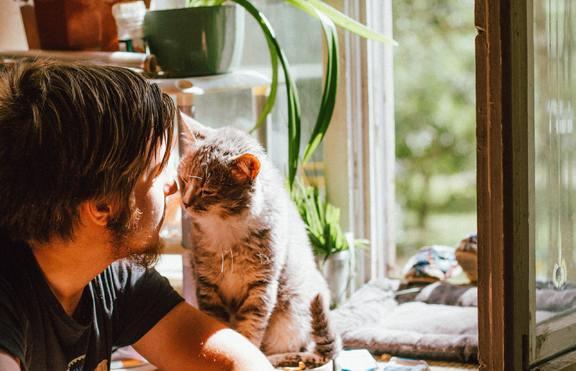 4 зодии, които обичат домашния си любимец повече от приятелите си