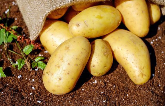 Отслабнете с ядене на картофи
