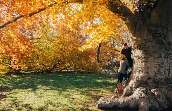 Есента ще донесе ЛЮБОВ на 4 зодии!