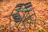 Магична есен за 3 зодии!