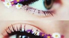 Цветя в очната линия